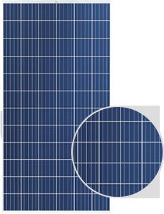 TSM-310PEG14