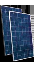OS Standard Line OS260P Solar Panel