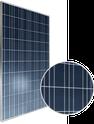 AXIpower AC-265P/156-60S Solar Panel