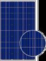 AS-6P30 AS-6P30-255 Solar Panel