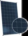 Dymond CS6K-260P-FG Solar Panel