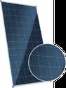 Dymond CS6X-325P-FG Solar Panel