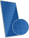 Maxpower CS6X-310P Solar Panel