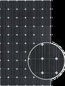 QSAR CSUN310-72M Solar Panel