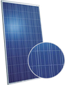 Standard Poly Series CSUN300-72P Solar Panel