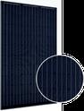 B-Series BM60 270BB Solar Panel