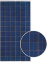C-Series Multicrystalline CP72 320SW Solar Panel