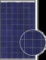 DP60 250