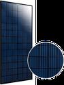 Elite Black Polycrystalline ET-P672305BB Solar Panel