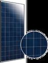 Elite Poly ET-P672310WW Solar Panel
