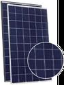 Eagle 1500V 60 JKM260PP-60-V Solar Panel