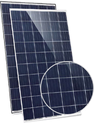 Eagle Dual 60 JKM255PP-60-DV Solar Panel