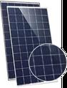 Eagle Dual 60 JKM260PP-60-DV Solar Panel