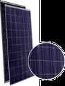Eagle Dual 72 JKM310PP-72-DV Solar Panel