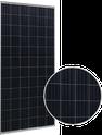 HSL 72S HSL72P6-PC-1-310 Solar Panel