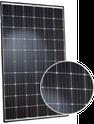 Q.PEAK Q.PEAK-G4.1 305 Solar Panel