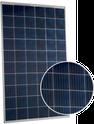Q.POWER G5 260 Solar Panel