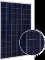 270P RNG-270P Solar Panel