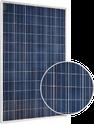 300P RNG-300P Solar Panel