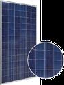 SLG-P Series SLG-310P Solar Panel