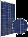 SSA-P Series SSA-265P Solar Panel
