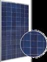 SSG-P Series SSG-310P Solar Panel
