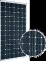 Sunmodule Plus Mono Sunmodule Plus SW295 Mono Solar Panel
