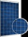 Sunmodule Pro-Series Sunmodule Pro-Series SW250 Poly Solar Panel