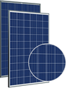 Allmax TSM-255PD05.08 Solar Panel