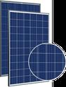 Allmax TSM-260PD05.05 Solar Panel