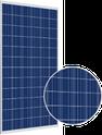 Tallmax TSM-320PD14 Solar Panel
