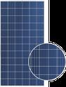 Duomax TSM-310PEG14 Solar Panel