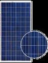 REC Peak Energy 72 REC300PE72 Solar Panel