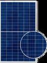 REC Peak Energy REC255PE Solar Panel