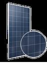 Amur Leopard RCM-350-6PA Solar Panel