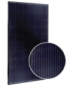 MSE PERC 60 MSE310SQ8T Solar Panel