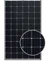 WSP-305M6