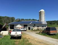 picture of Dairy Farm Ran on Solar Energy