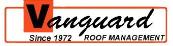 Vanguard Energies logo