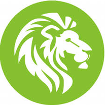 Lionshead Energy - Solar & Energy Efficiency Services logo