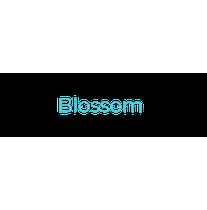 Blossom Solar logo