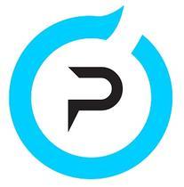 Pensar Services logo