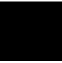 Sun Side Energy logo