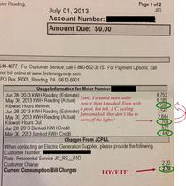 Actual Customer Electric Bill on Solar.