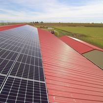 Farm Solar QCell 310w DUO
