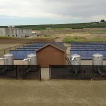 Brojte/First Fruits Solar Hot Water Project for Worker Housing