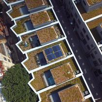 Green Roof Array