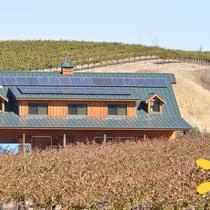 Agricultural and Wine Solar