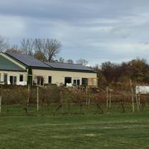 Young Sommer Winery in Williamson went solar in the Fall of 2015