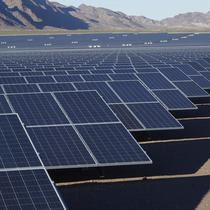 Trina Solar Utility Scale Installation